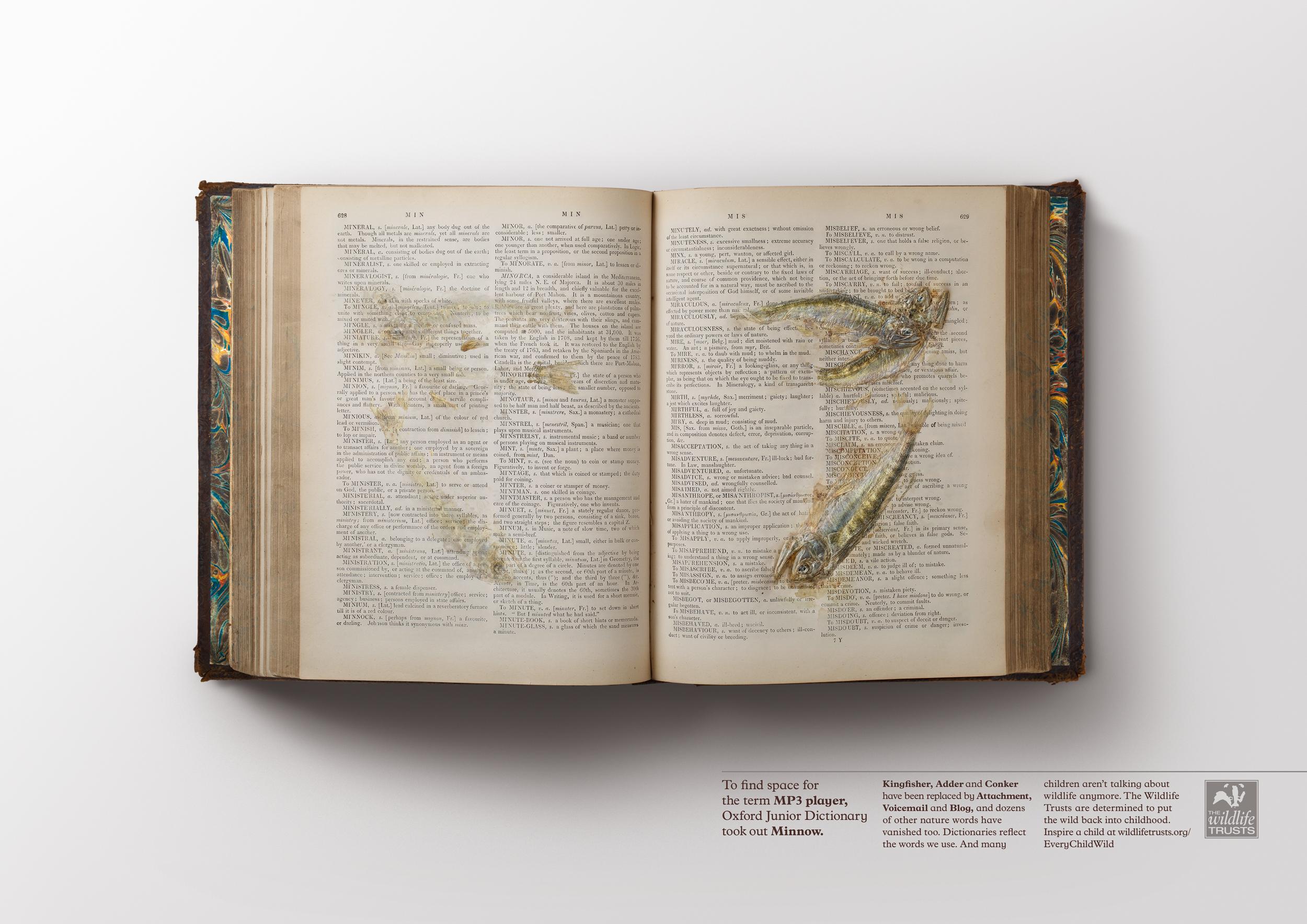 Nature Words  Ogilvy & Mather London