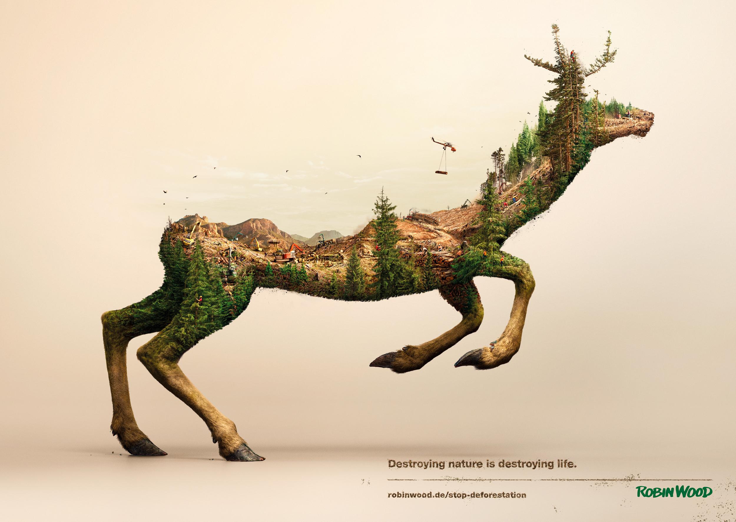 A_Robin Wood_Deer_Eng_3.jpg
