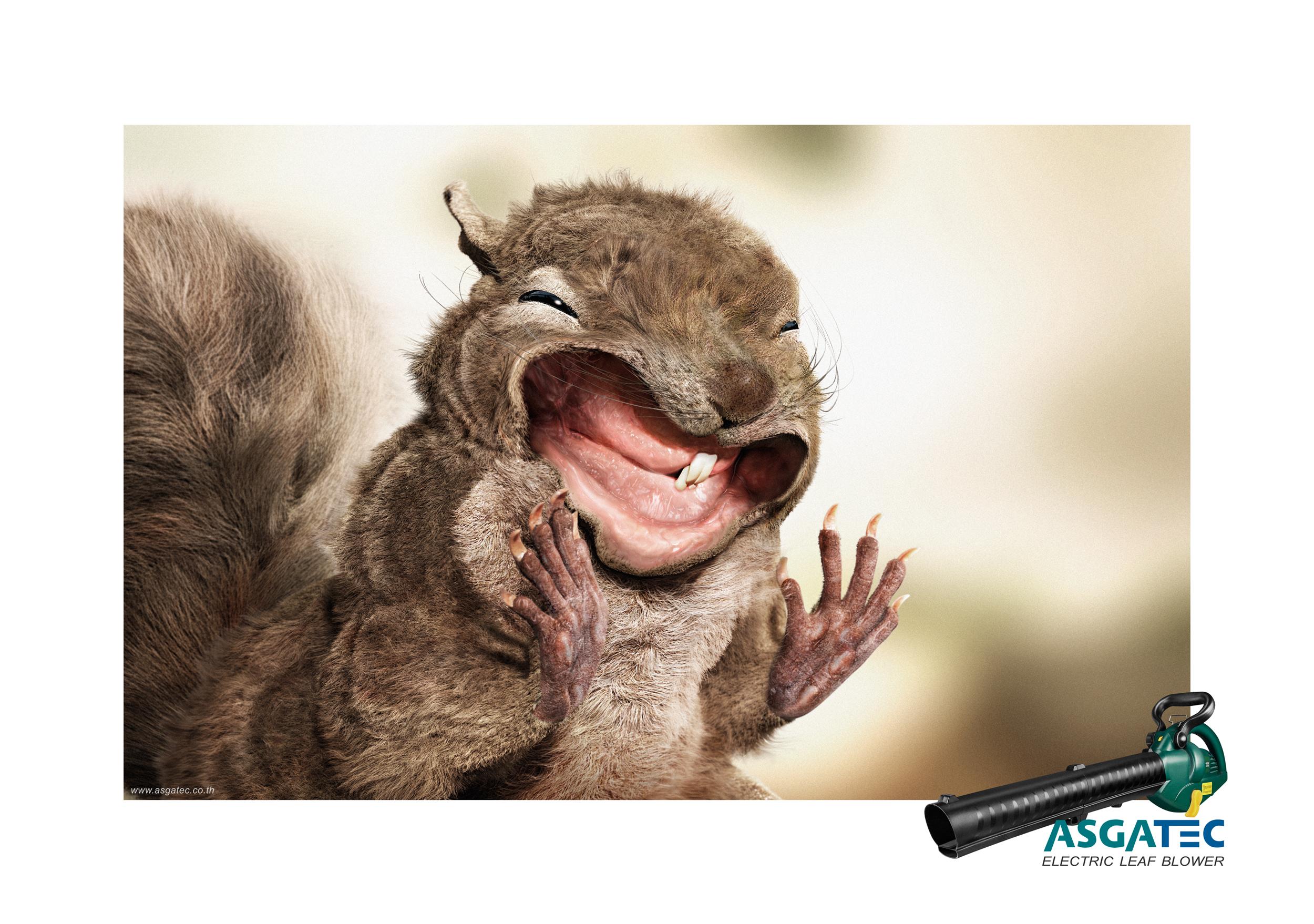 ASGATEC_Blow hard Squirrel_Step_2.jpg