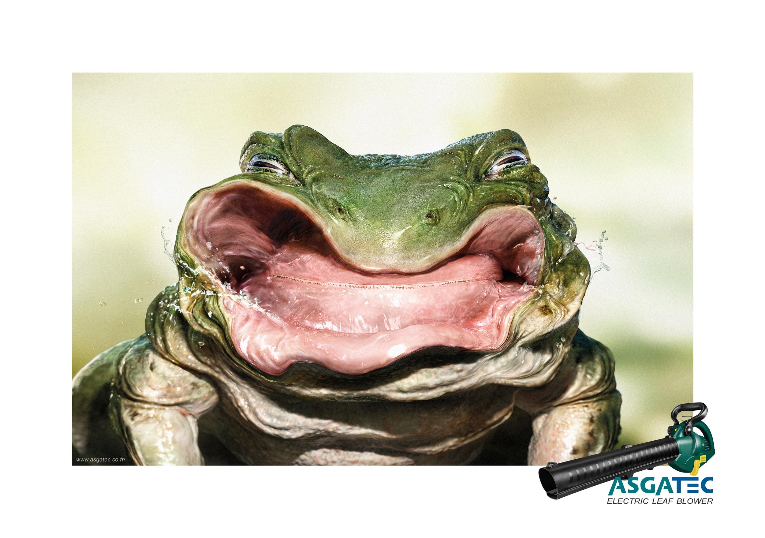 ASGATEC_Blow hard Frog_Step.jpg