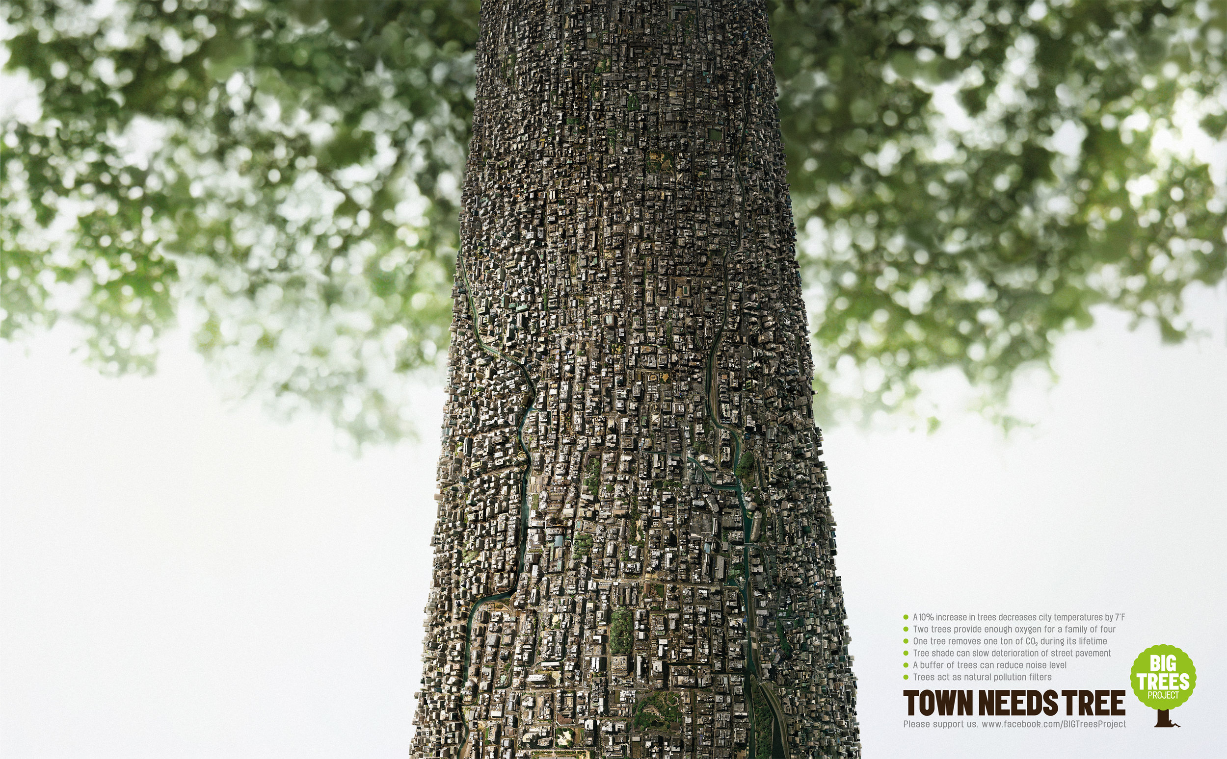 Town_Need_Tree_Step.jpg