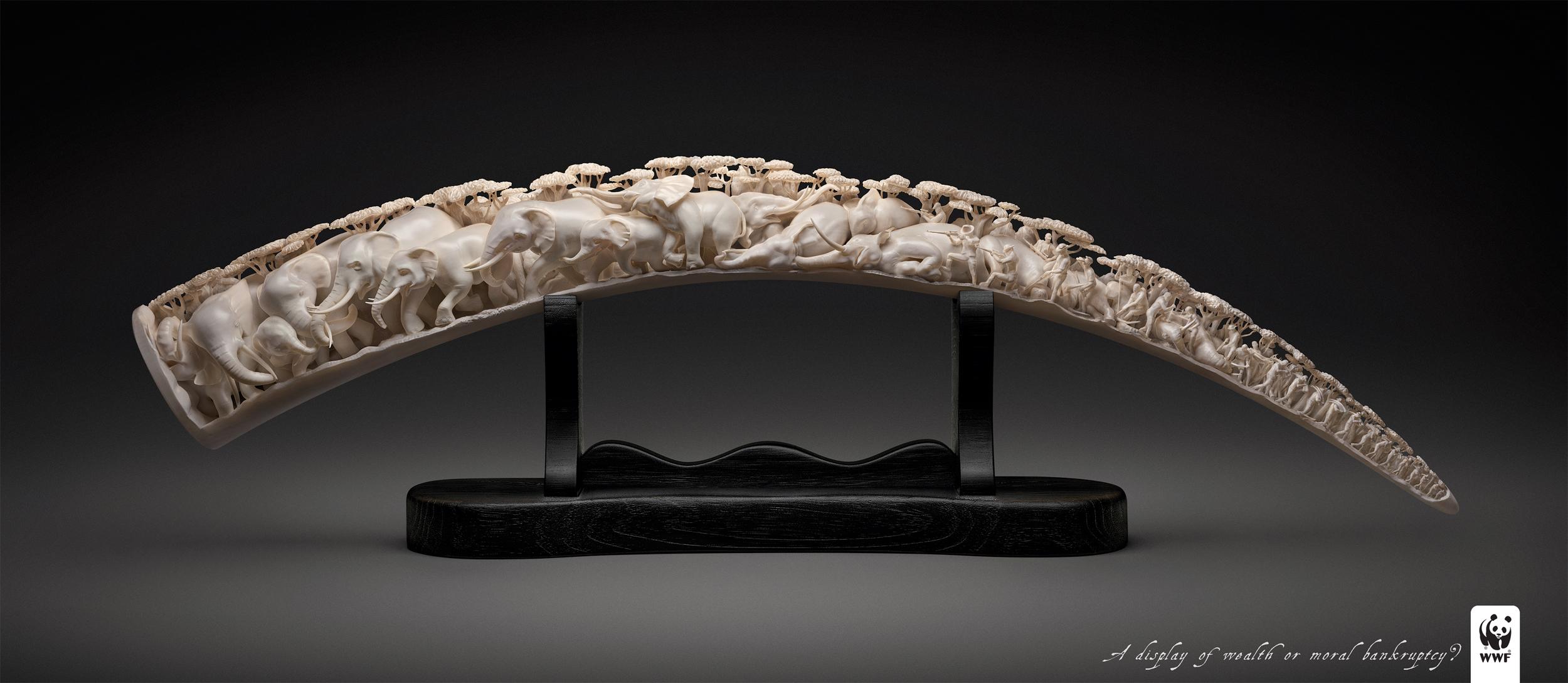 WWF_Ivory_Step_1.jpg