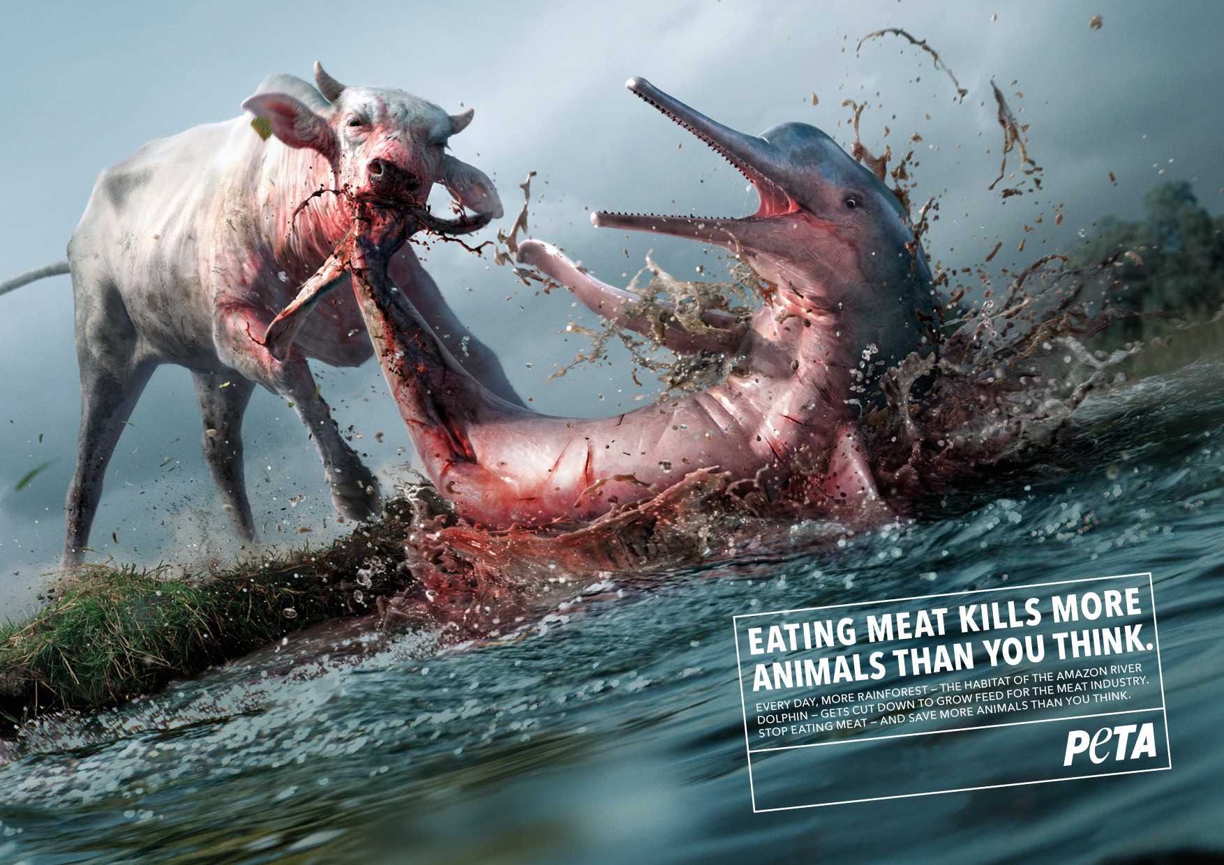 PETA_AZ_KillerCow_DOLPHIN_210x297_EN_190123.jpg