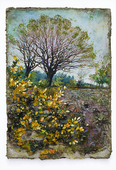 Gorse in clear fell - Mixed Media