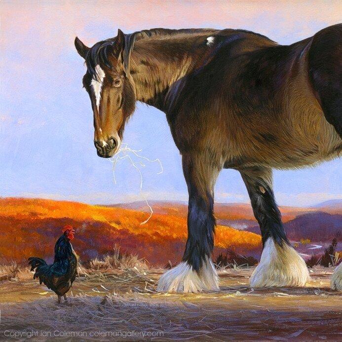 Shire-Horse-and-Barnvelder-Cockerel-by-Ian-Coleman-DPW.jpg