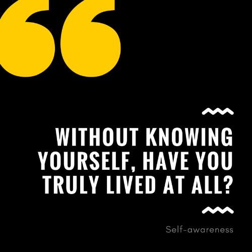 selfawareness.png