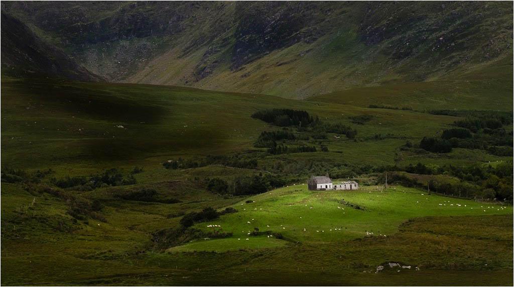 246_Derrygarreff Valley_Elaine Adkins