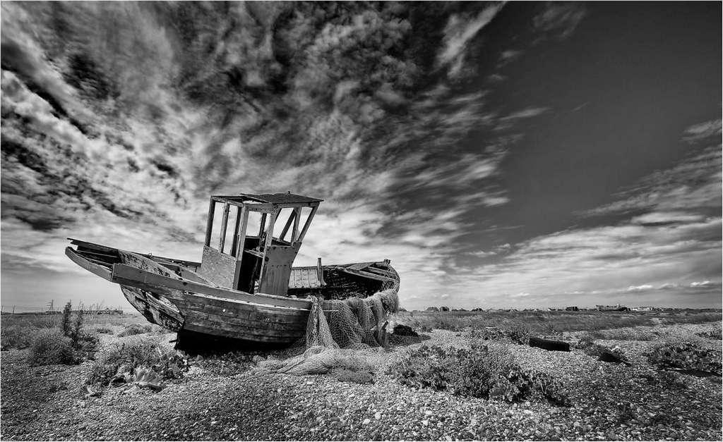 High & Dry © Brian Adkins