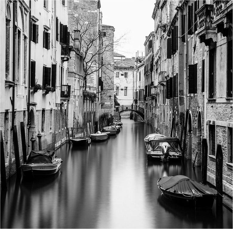 Backwater, Venice © Elaine Adkins