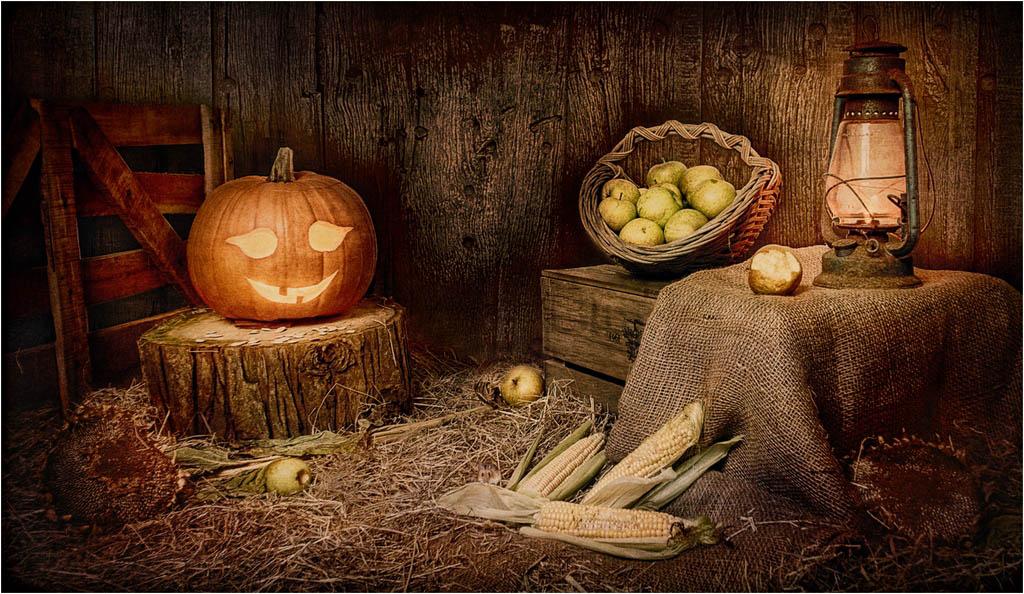 Halloween © Fay Bowles ARPS