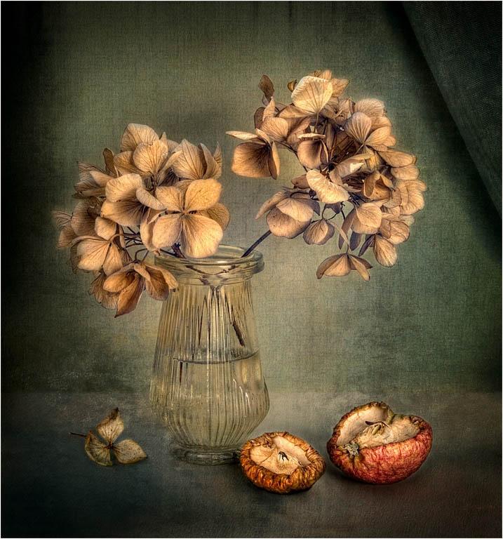 Hydrangea and Apple © Fay Bowles ARPS