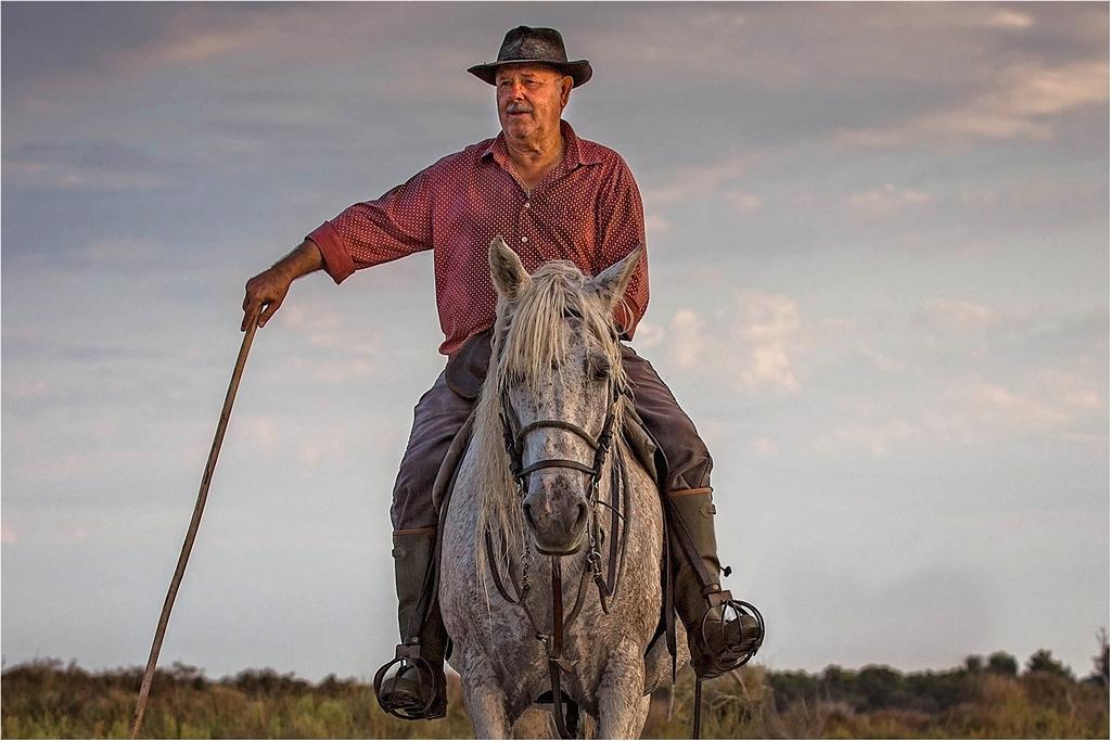 Camargue Cowboy © Catherine Dashwood LRPS