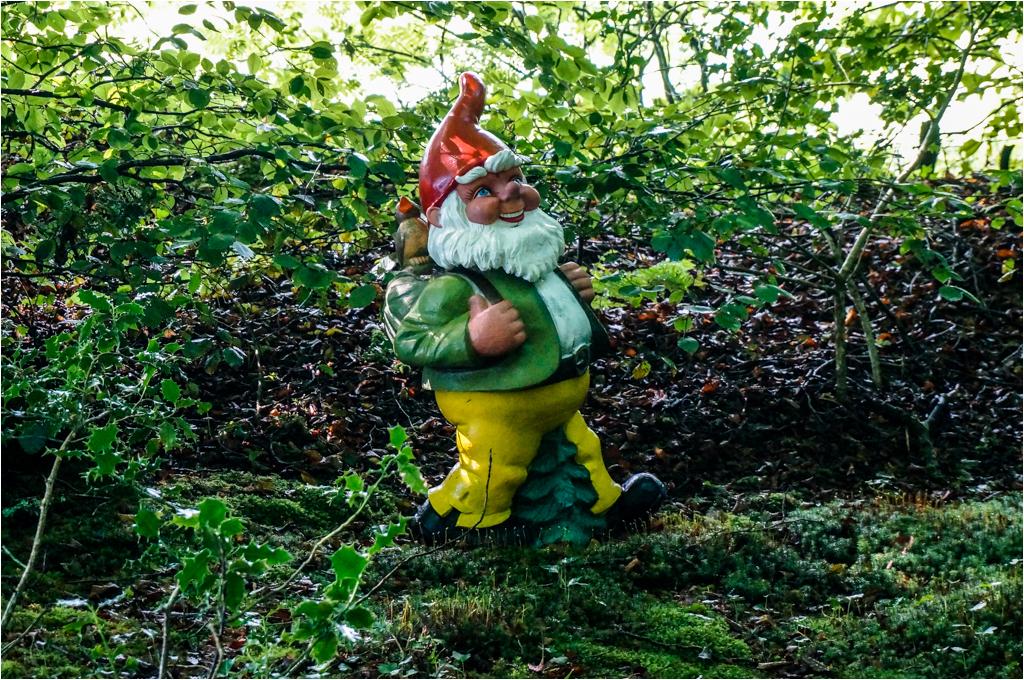 Gnome Hunting © Ann Hart