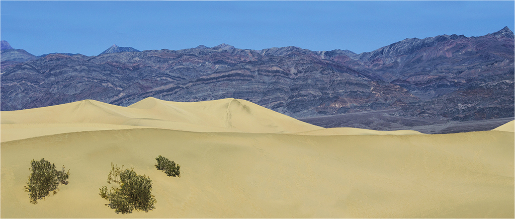 Death Valley Dunes © Neil Grimshaw