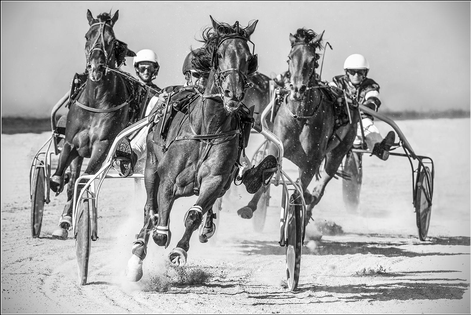 242_Race to the Finish_Jim Budd.jpg