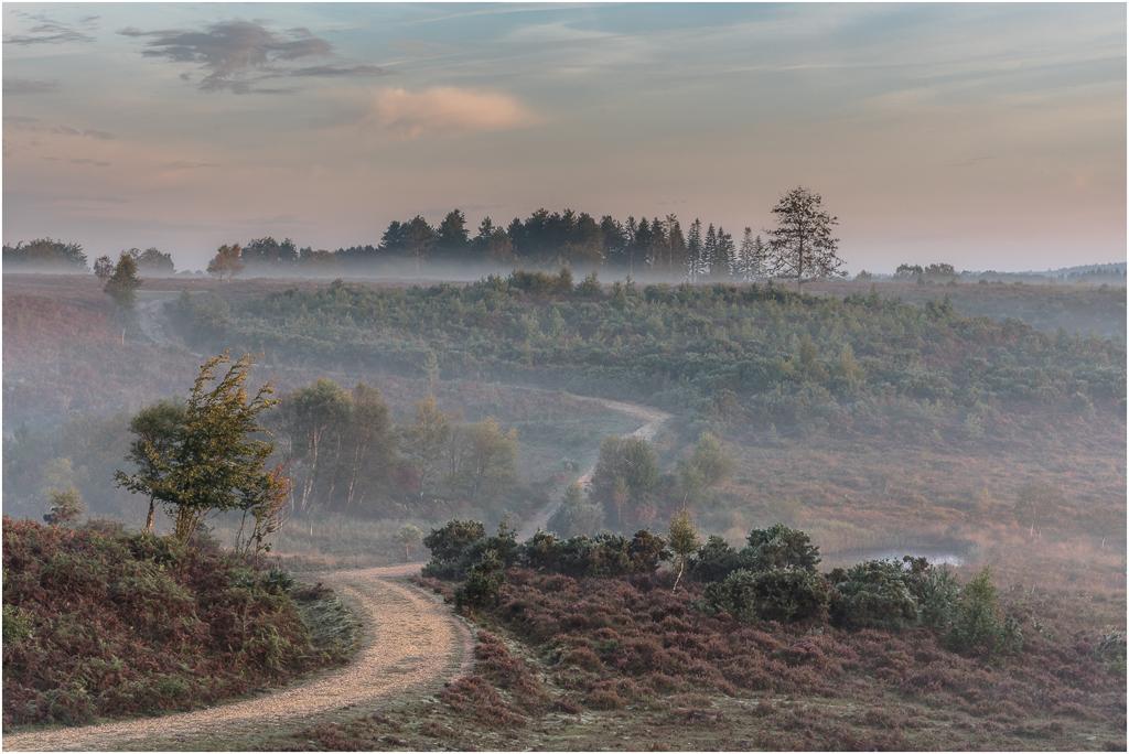 Morning Mist ©  Frank Leavesley