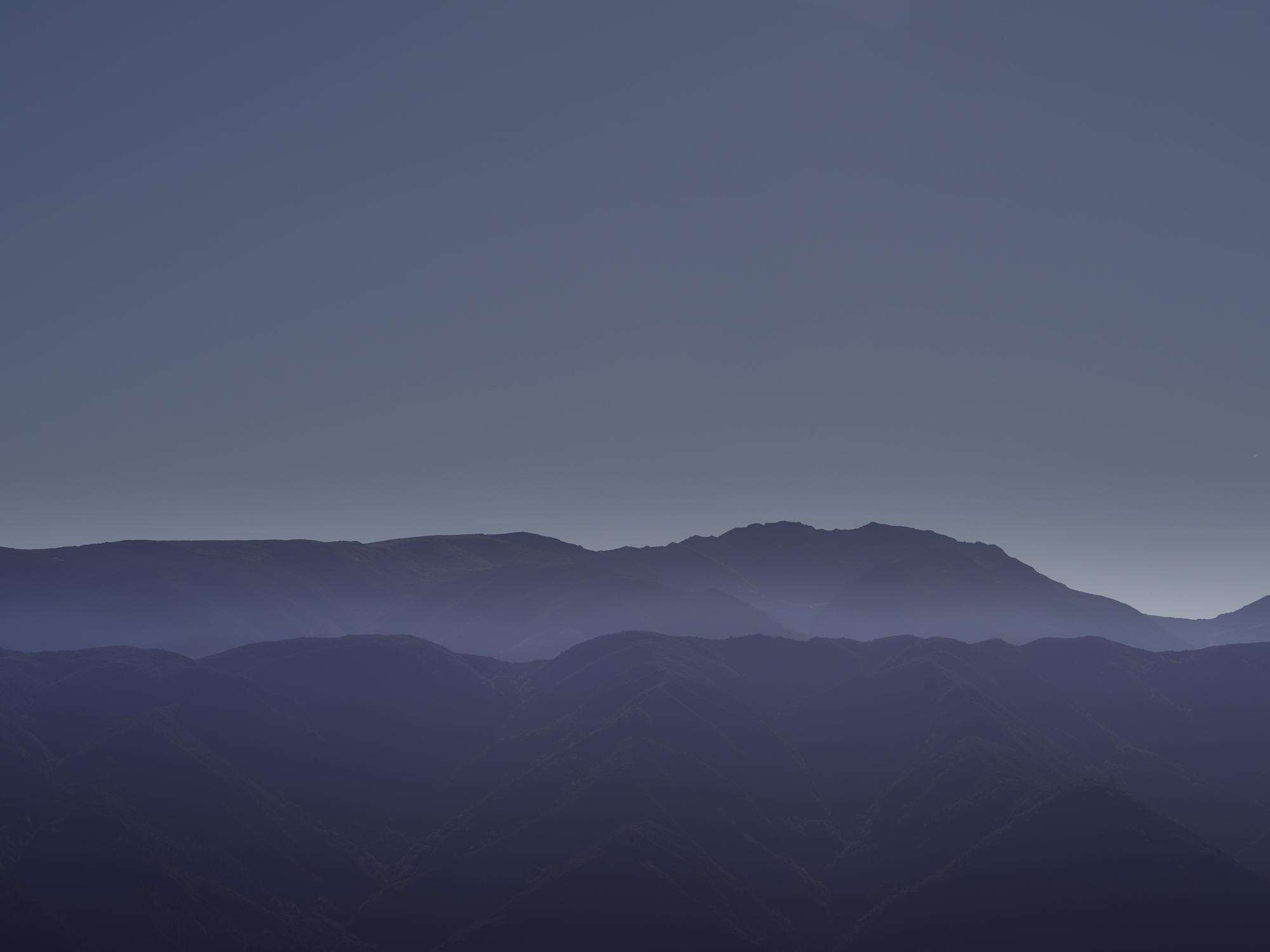 NZ-4919-Flat.jpg
