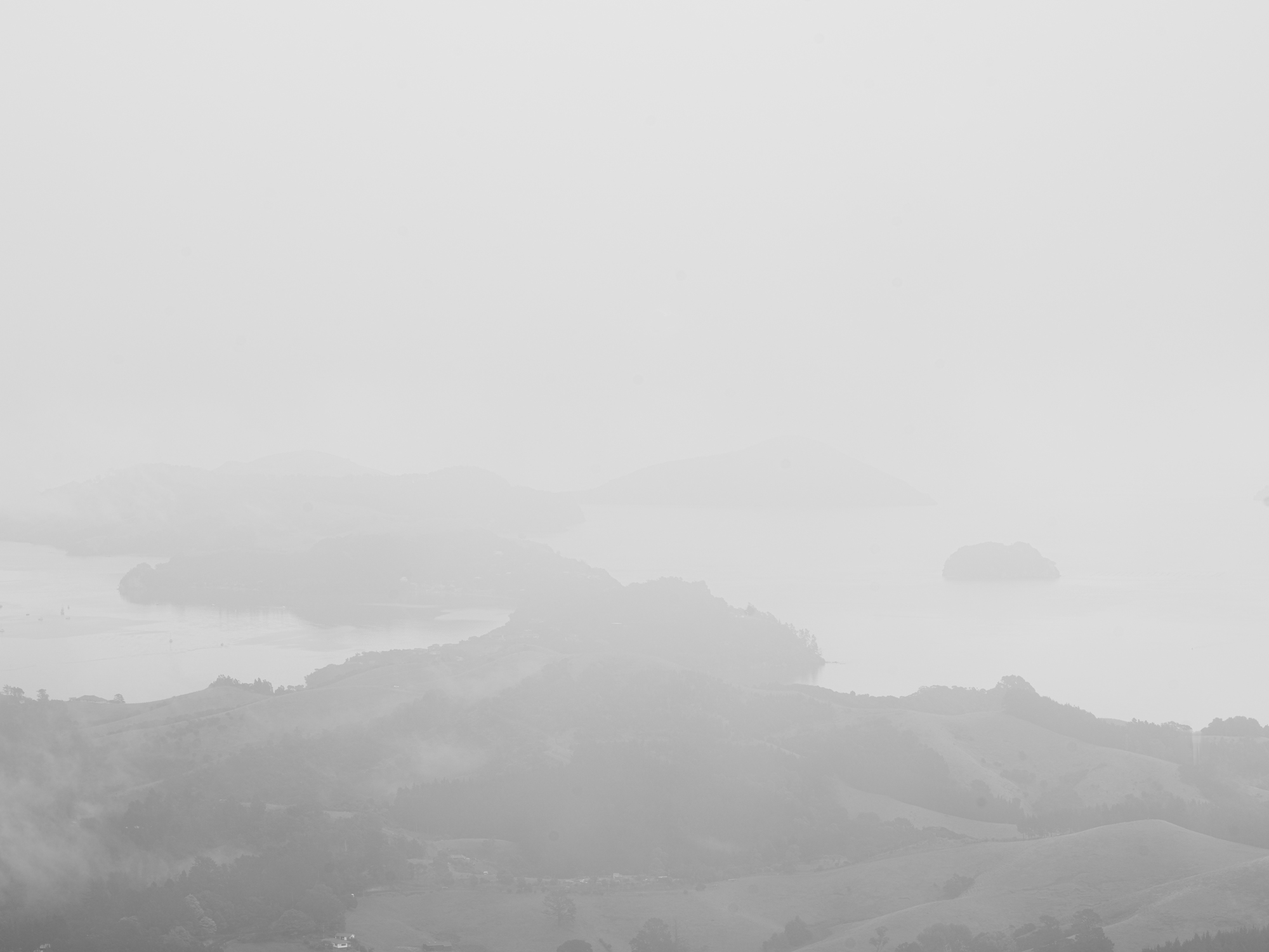 NZ-2089.jpg