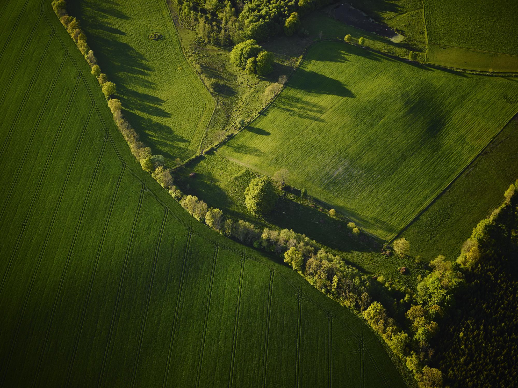 Landshypotek-Skane-1806.jpg