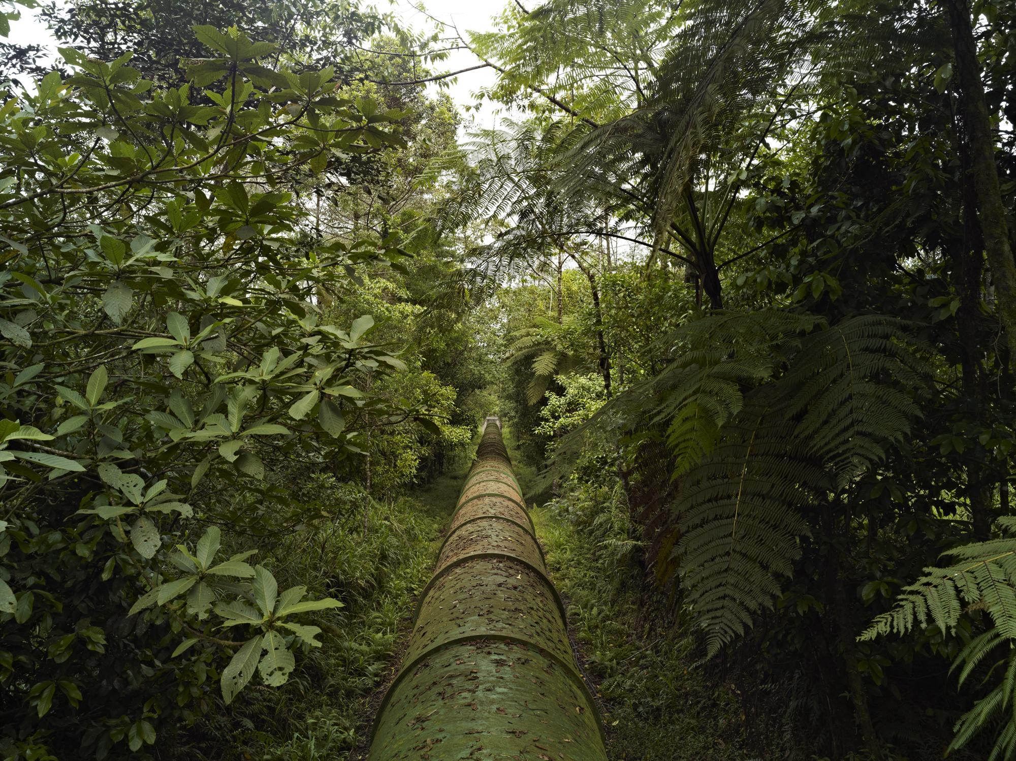 Pipeline CF008395.jpg