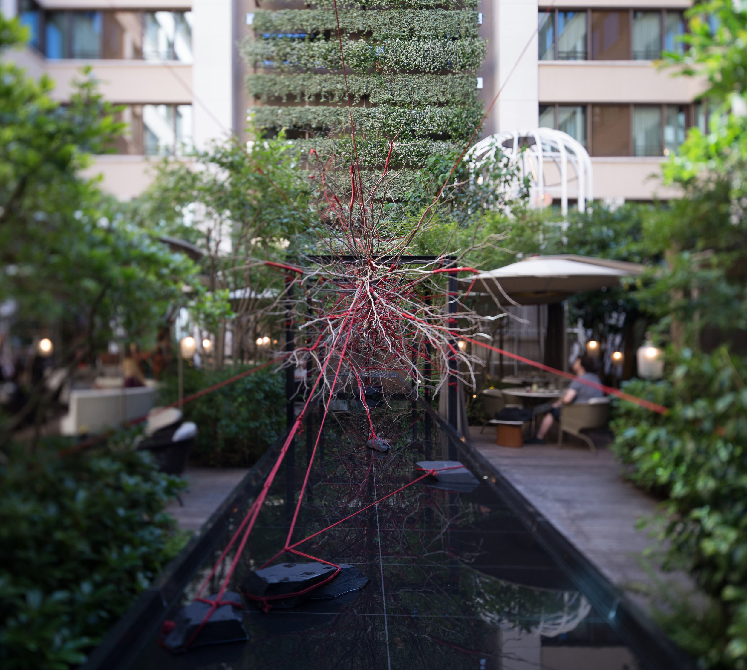 The Red Garden / Hotel Mandarin Oriental Paris   Design of an unusual plant installation mixing Tanqueray's elegant world with Shibari, the Japanese binding art.