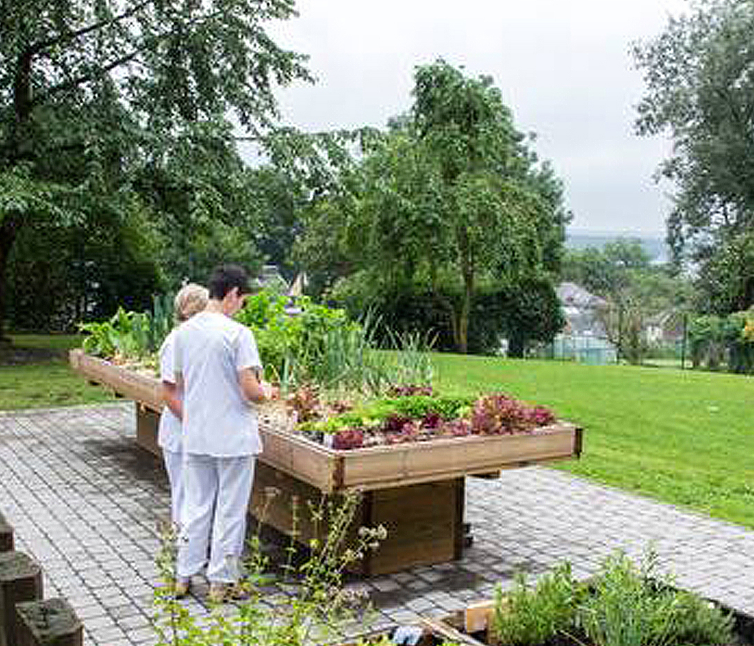Vegetable garden with raised tray for easy cultivation and maintenance