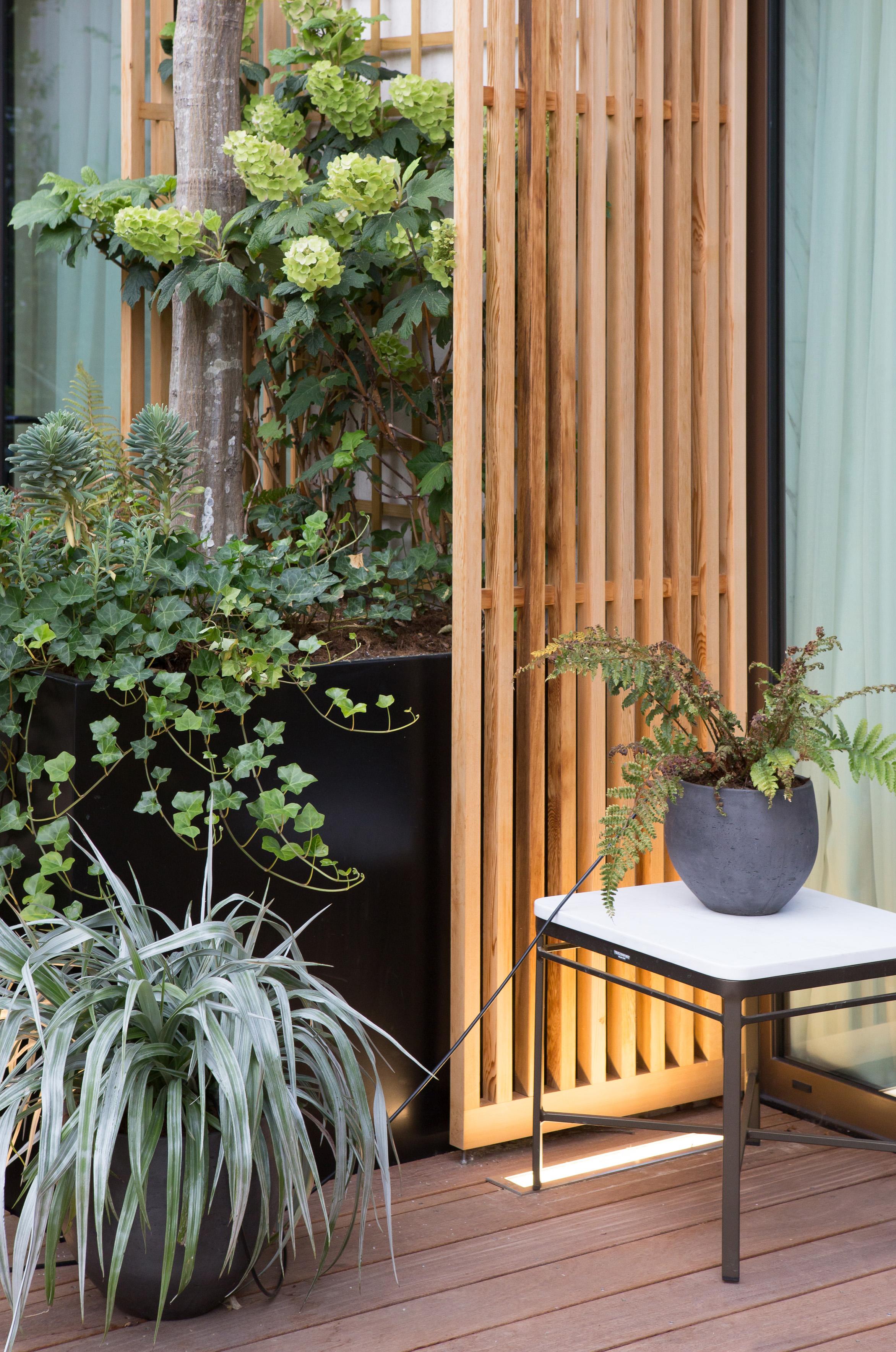 hôtel_mandarin_oriental_paris_terrasses_jardins_christophe_gautrand_paysagiste_4.jpg