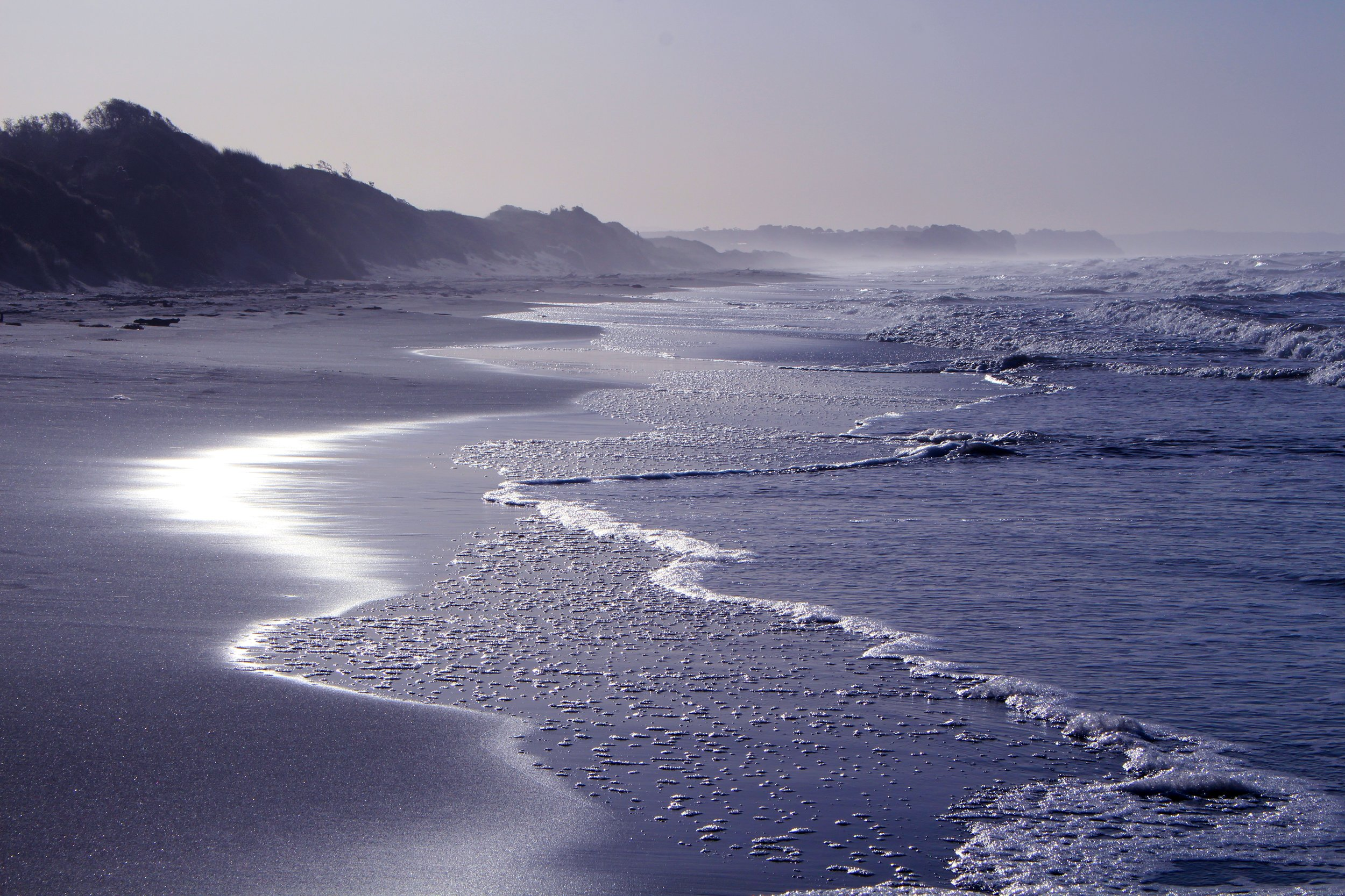 beach-1631874.jpg