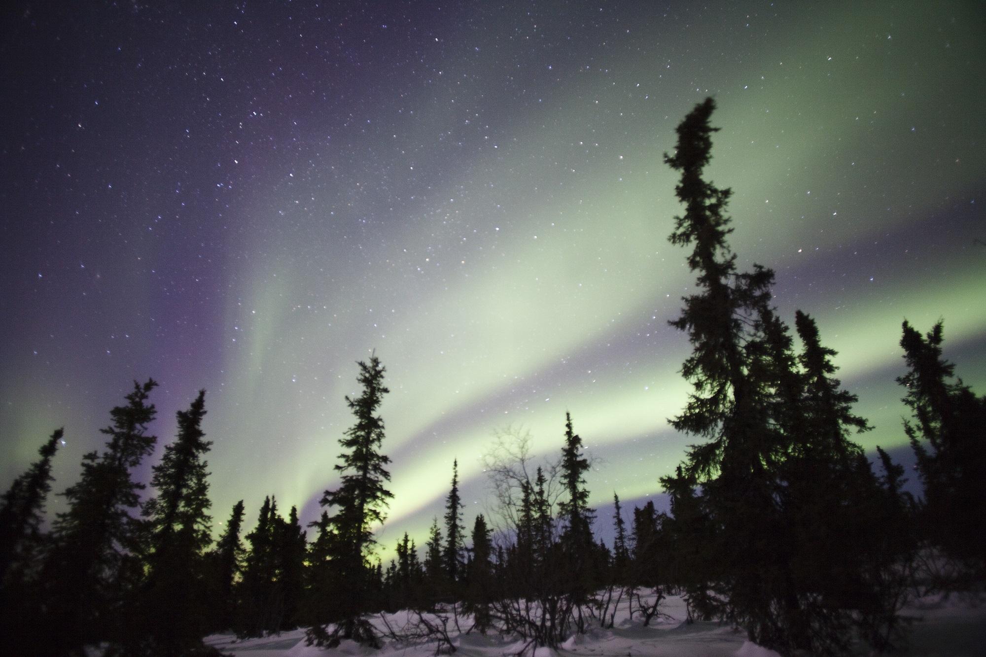 aurora-894238.jpg