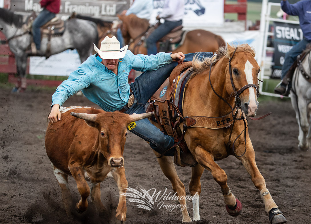 KAGEN SCHMIDT competing at the Hairy Hill Friday Perf in Hairy Hill, Alberta, Canada on July 06, 2018. Photo taken by Wildwood Imagery / Chantelle Bowman.