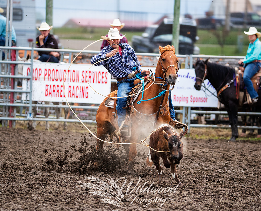 LANCE GORDON competing at the Sun Perf - Couttsgrass Rodeo in Coutts, Alberta, Canada on June 17, 2018. Photo taken by Wildwood Imagery / Chantelle Bowman.