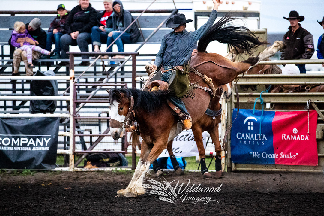 Kole Ashbacher competing at the Saturday Perf -  Stettler Steel Wheel Stampede in Stettler, Alberta, Canada on June 09, 2018. Photo taken by Wildwood Imagery / Chantelle Bowman.