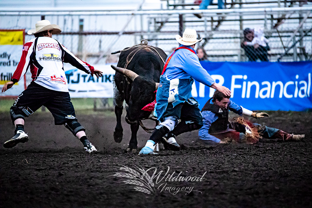 REED SALMON competing at the Saturday Perf -  Stettler Steel Wheel Stampede in Stettler, Alberta, Canada on June 09, 2018. Photo taken by Wildwood Imagery / Chantelle Bowman.