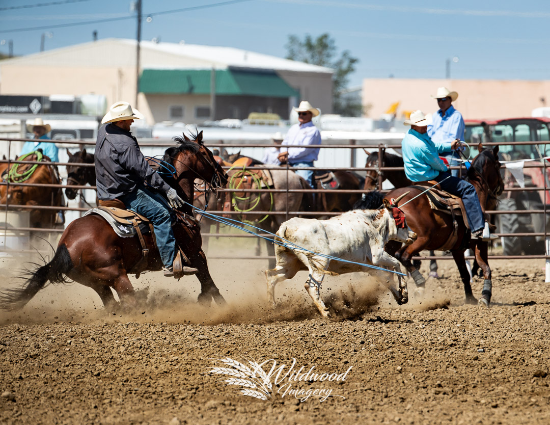 competing during the Havre Rodeo - Thurs Slack in Havre, Montana, United States on July 19, 2018. Photo taken by Wildwood Imagery / Chantelle Bowman.