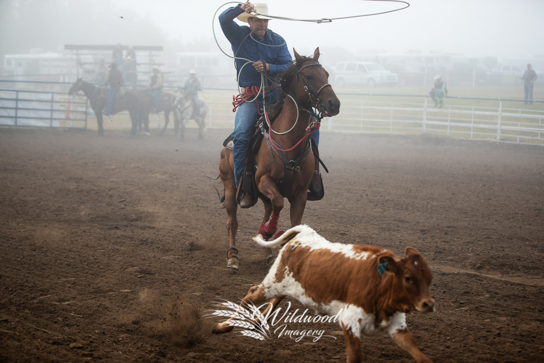 STEVE HARPE competing at the Smoky Lake Stampede Sun Slack in Smoky Lake, Alberta, Canada on August 05, 2018. Photo taken by Wildwood Imagery / Chantelle Bowman.