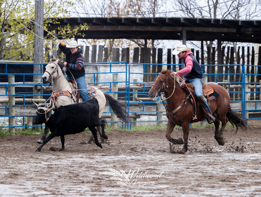 competing at the U of S CR Sun Perf in Martensville, Saskatchewan, Canada on September 23, 2018. Photo taken by Wildwood Imagery / Chantelle Bowman.
