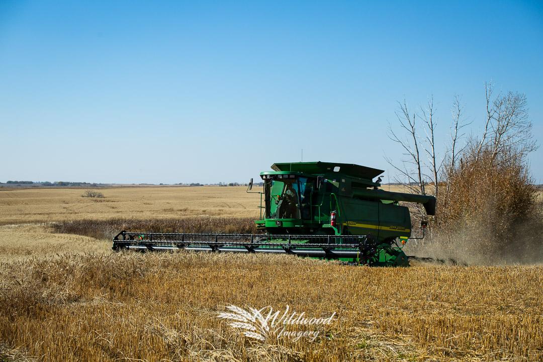 in , Saskatchewan, Canada on October 06, 2018. Photo taken by Wildwood Imagery / Chantelle Bowman.