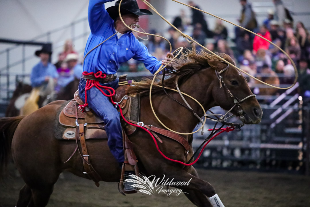 competing at the FCA Finals - Fri Eve in Red Deer, Alberta, Canada on October 12, 2018. Photo taken by Wildwood Imagery / Chantelle Bowman.