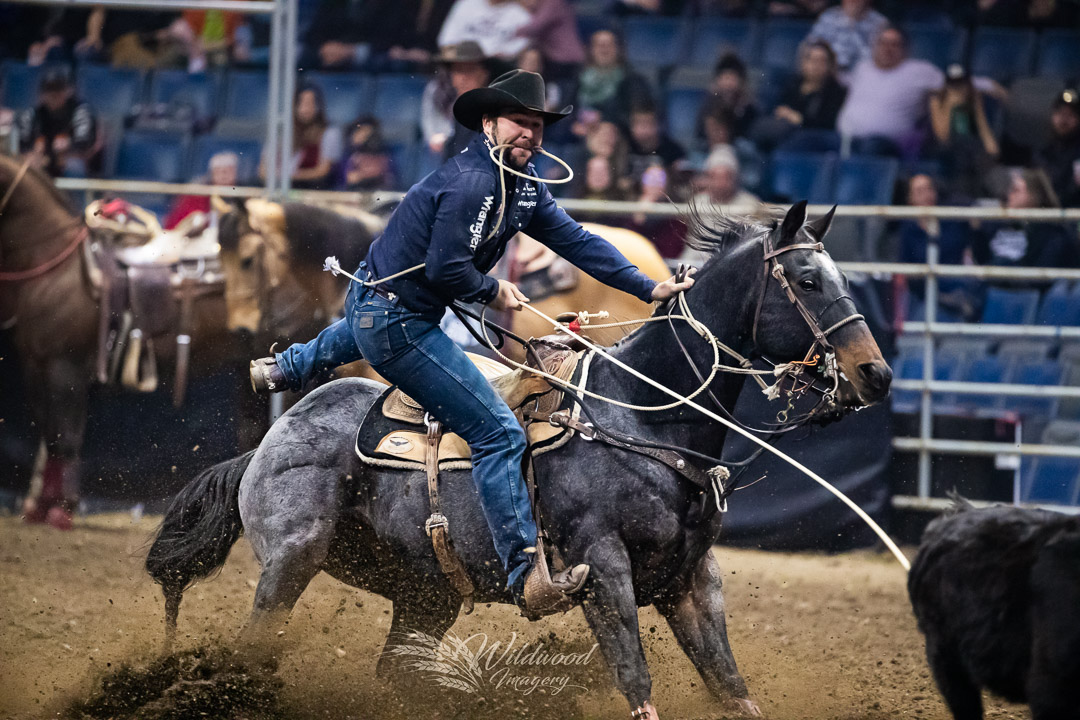MORGAN GRANT competing at the CWA Friday Rodeo in Regina, Saskatchewan, Canada on November 23, 2018. Photo taken by Wildwood Imagery / Chantelle Bowman.