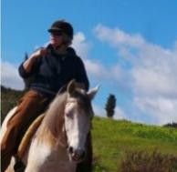 Activiteiten paardners