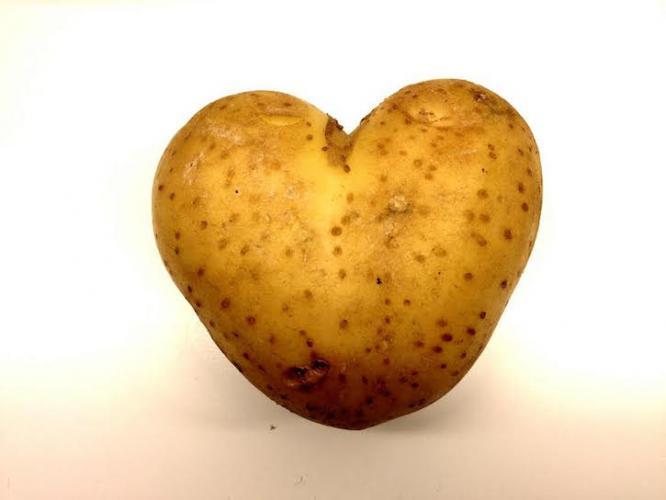 potatoe love.jpg
