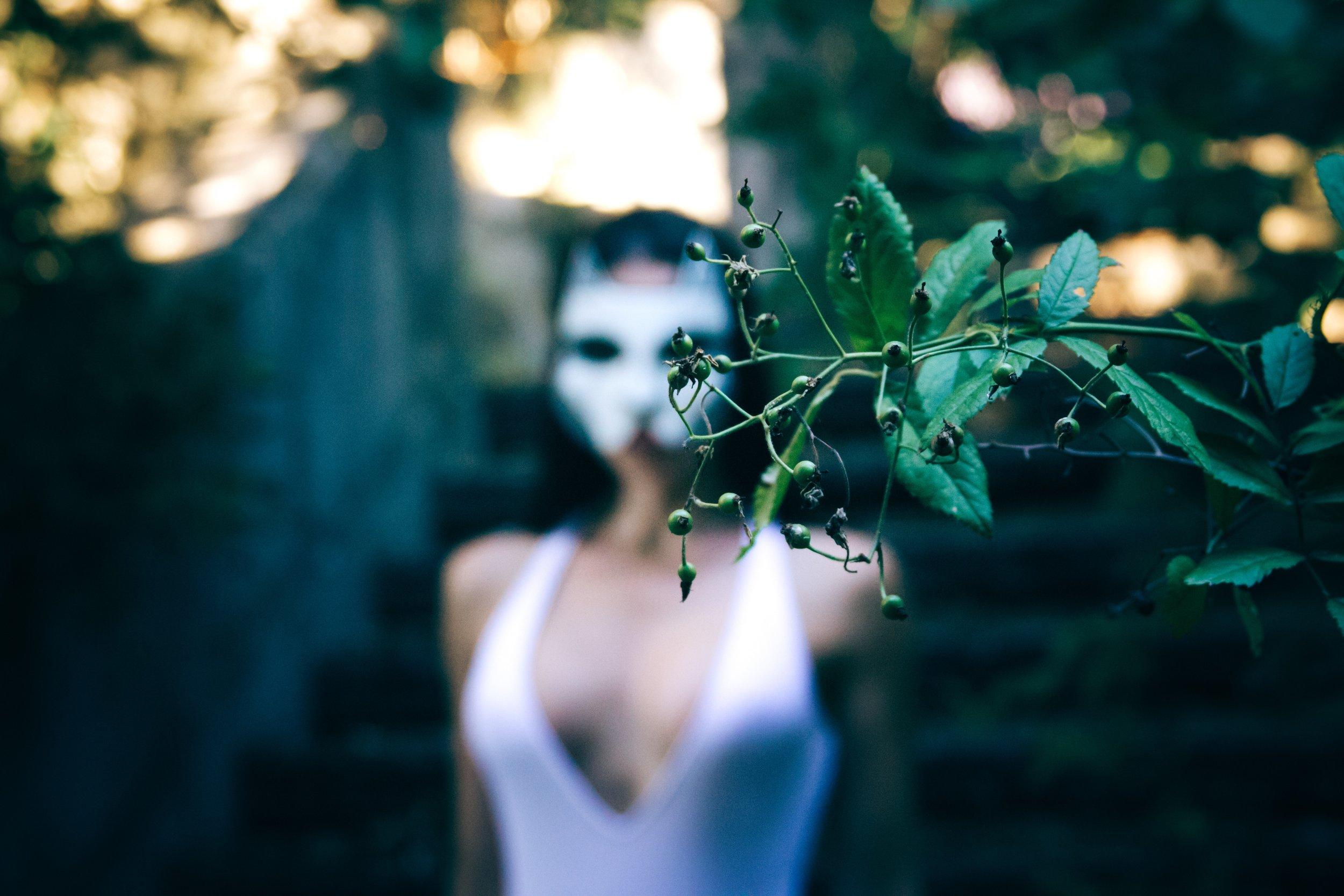 Photo by  Igor Starkov on  Unsplash