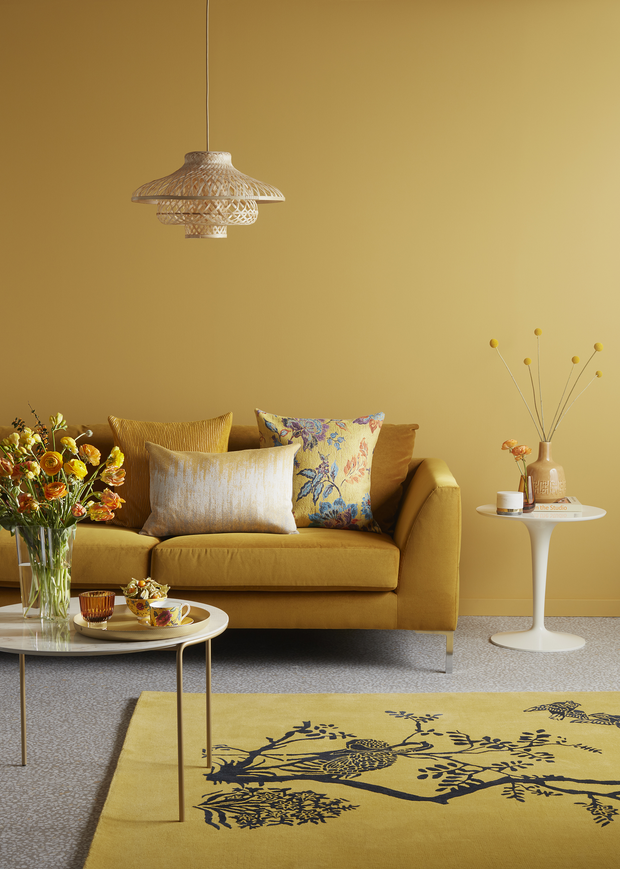 YELLOW_TREND_SHOOT_ROOMalt10.jpg