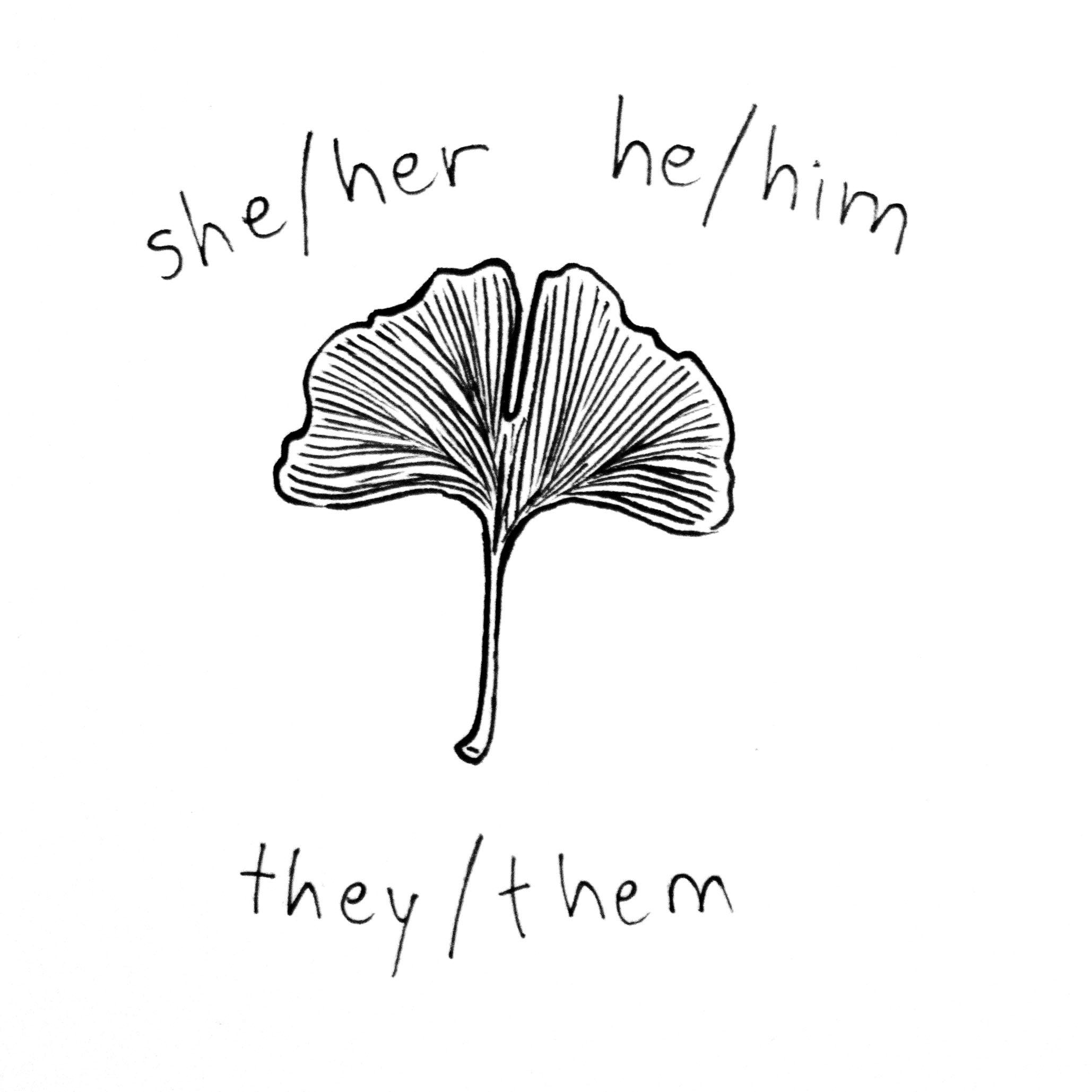 she_he_they.jpg