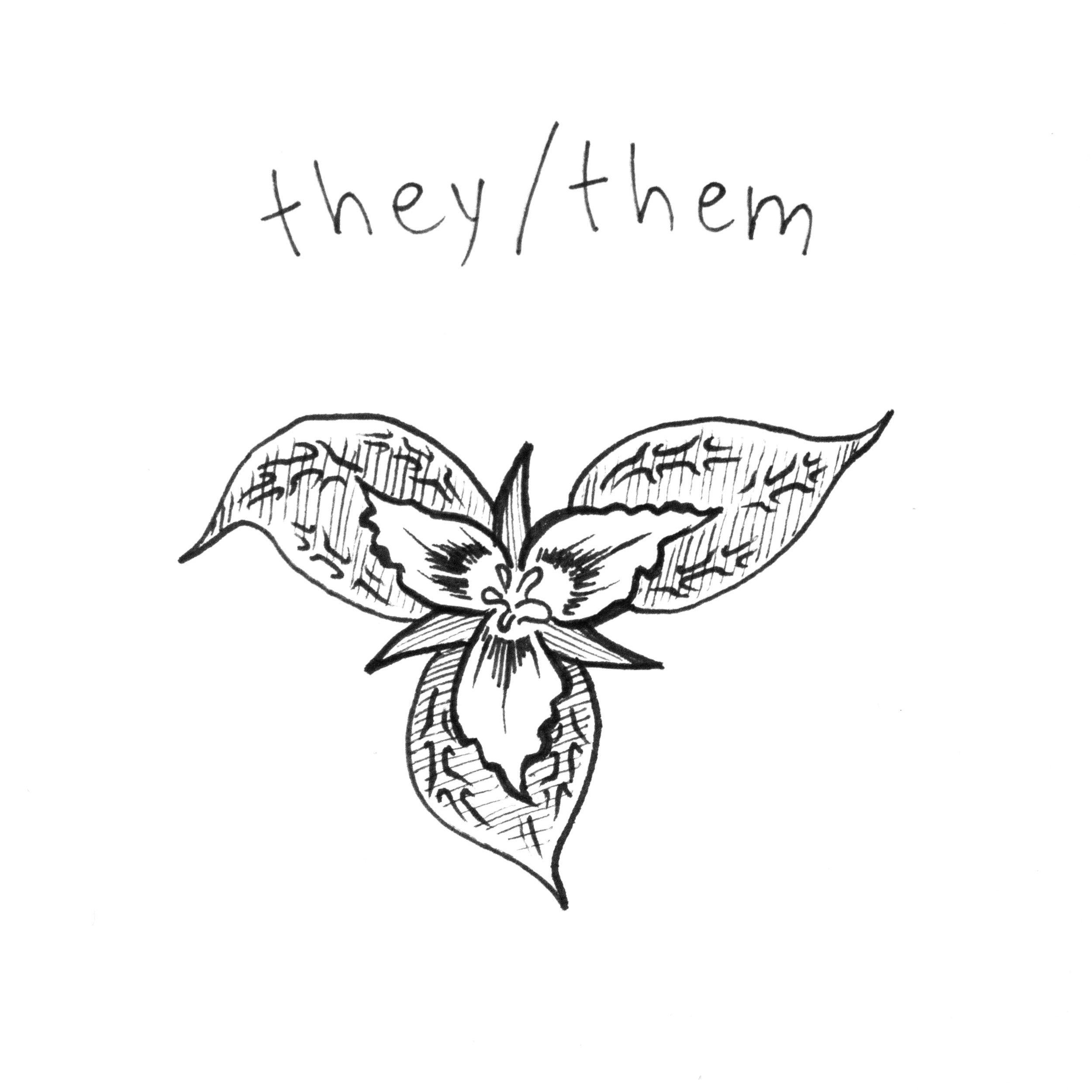 they_them2.jpg