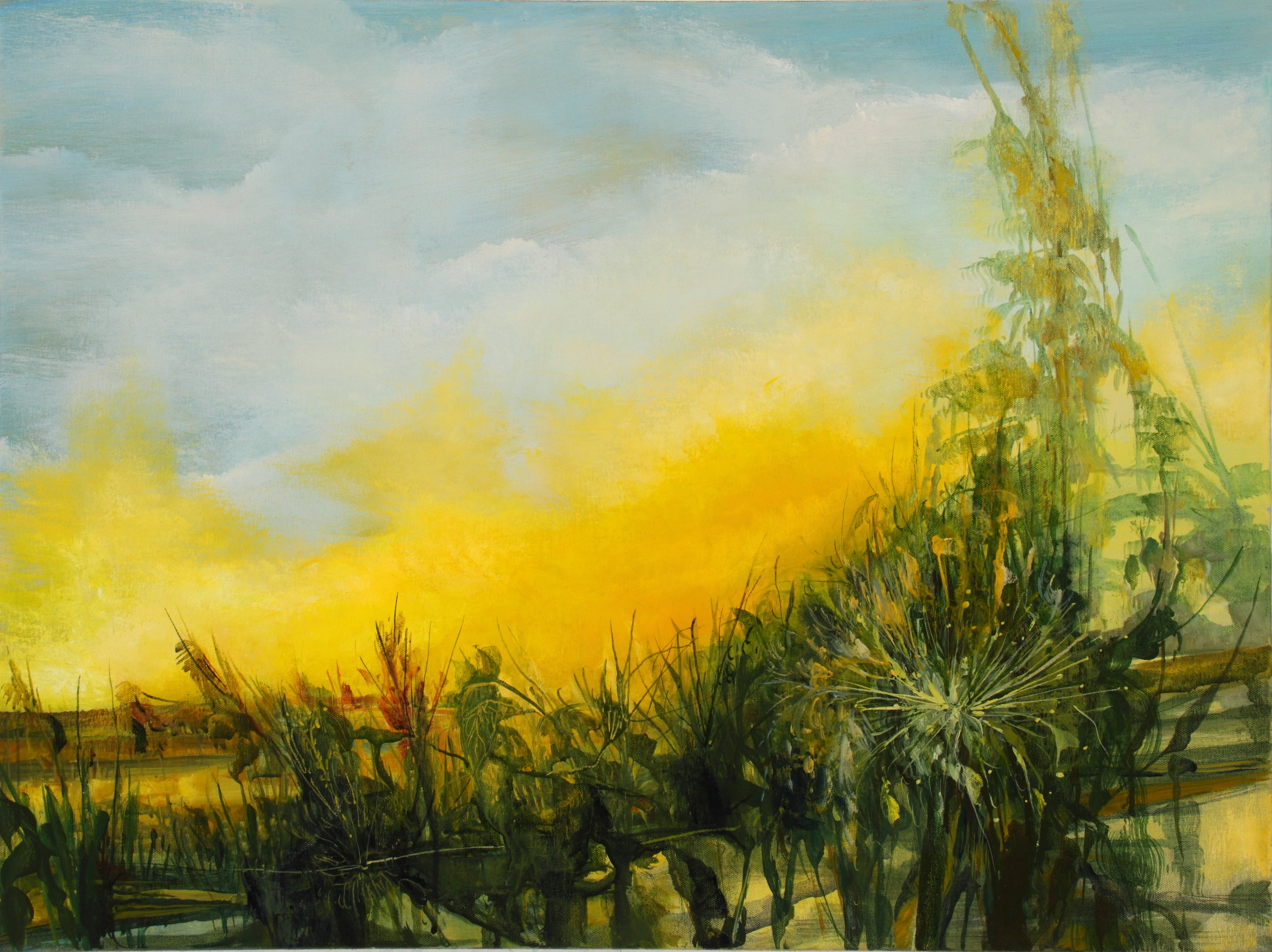 Elementary Geography Sunrise, 2010, 24 x 32 inches, acrylic on canvas