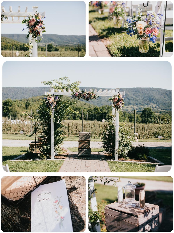 Kelly-Zach-Collage-6.jpg
