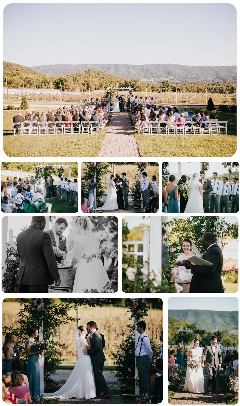 Kelly-Zach-Collage-8.jpg