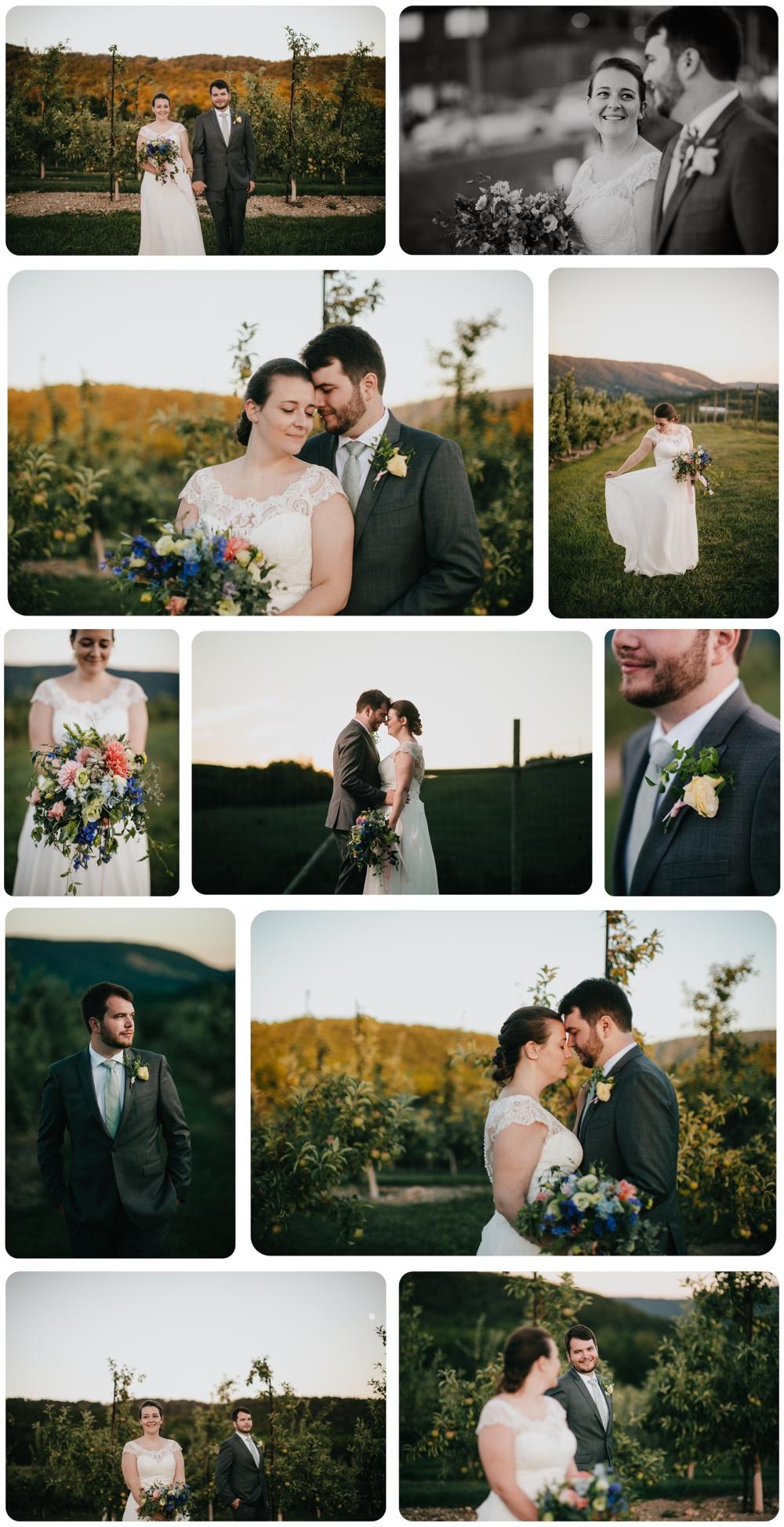 Kelly-Zach-Collage-12.jpg