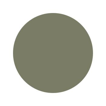 Green neutral.jpg